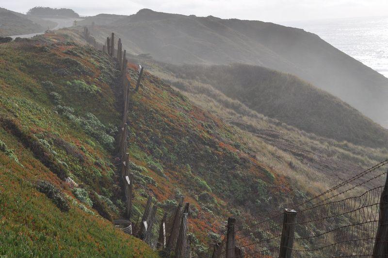 California 2012223