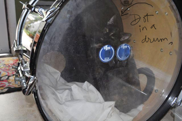Dot in a drum
